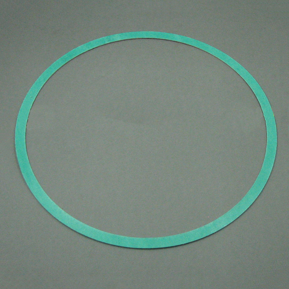 Armstrong Pump Casing Gasket 426401-004