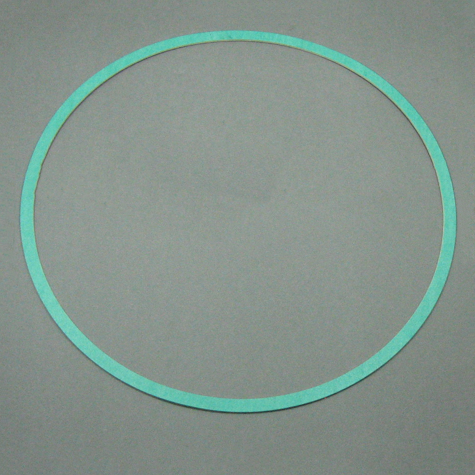 Armstrong Pump Casing Gasket 426401-005